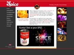 SPiCE Feuershow und Feuerwerk